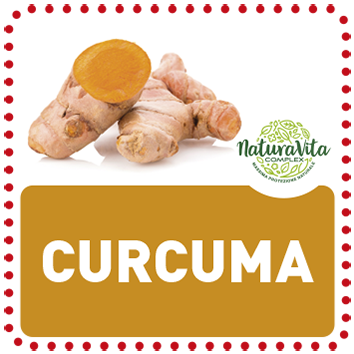 CARDingredienti_0004_curcuma copia